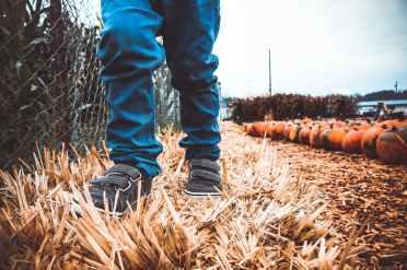 autumn boy child childhood